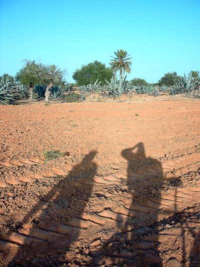 turystyka rowerowa w Tunezji